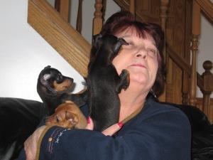 dottie meets pups
